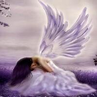 Школа выживания для ангелов